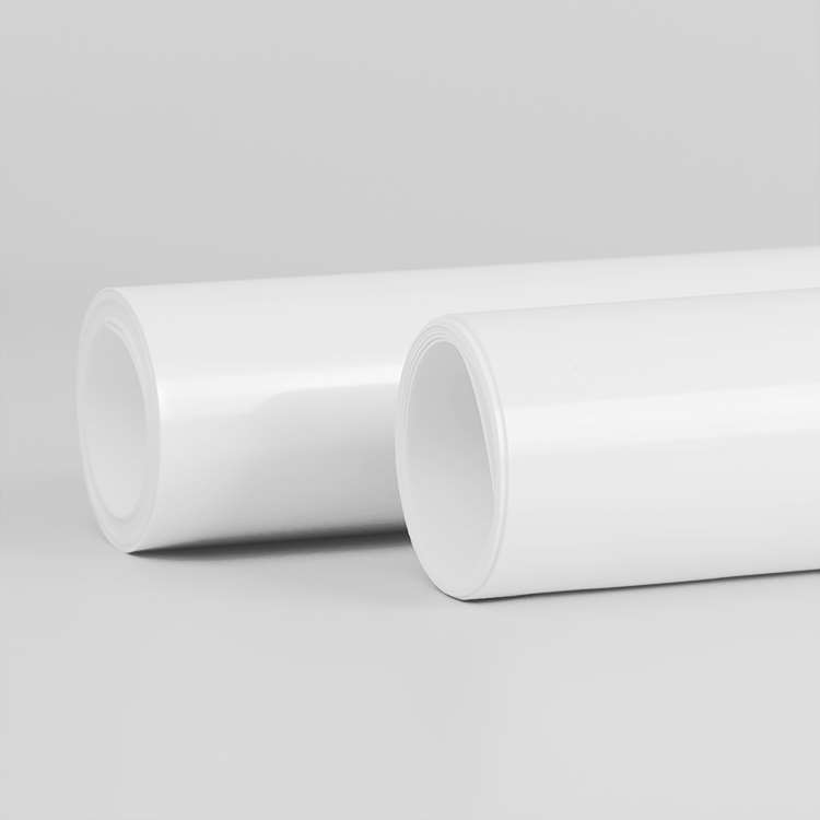 <strong>PP Rigids Polypropylene blister forming sheet roll for thermoforming</strong>