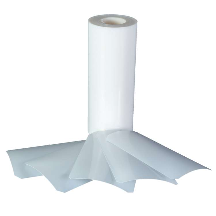 1.1mm Co-extruded pp evoh pp roll for steamed rice packaging